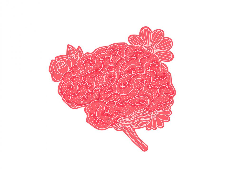 A senha neuroquímica da satisfação