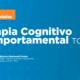 Seminário Online Terapia Cognitivo Comportamental