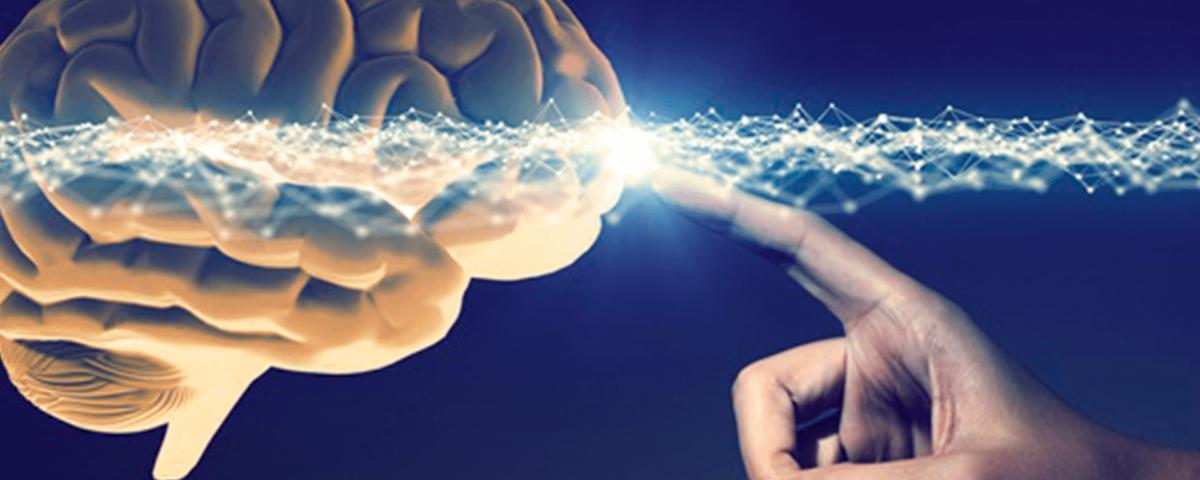 Diferença entre o curso de Neuropsicologia e Neurociencias e Comportamento