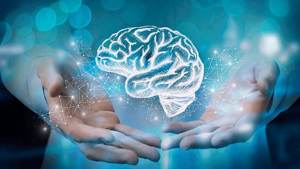 A lesão cerebral adquirida do ponto de vista da neuropsicologia